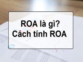 roa-la-gi-2